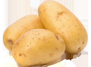 immagine patate