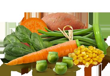 immagine verdure