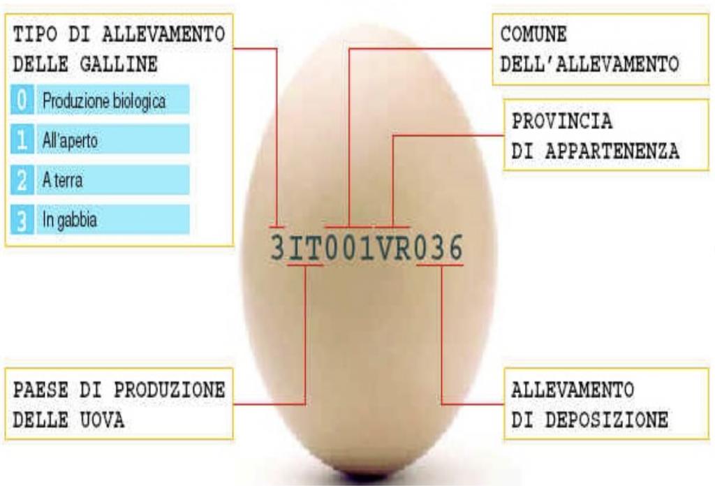 etichettatura-uova